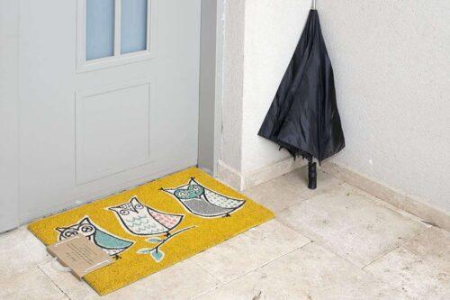 שטיח שלישית ינשופים לכניסה