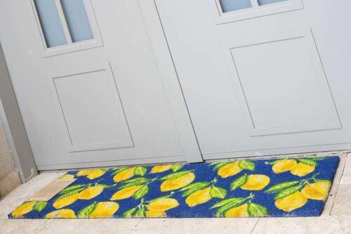 שטיח ארוך לכניסה לבית